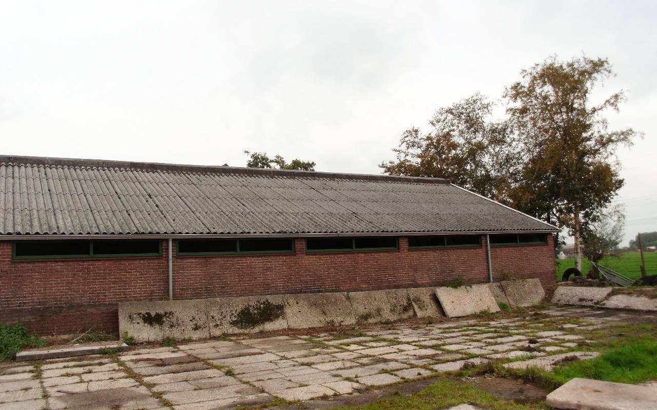 Bon - Zunderdorp 2