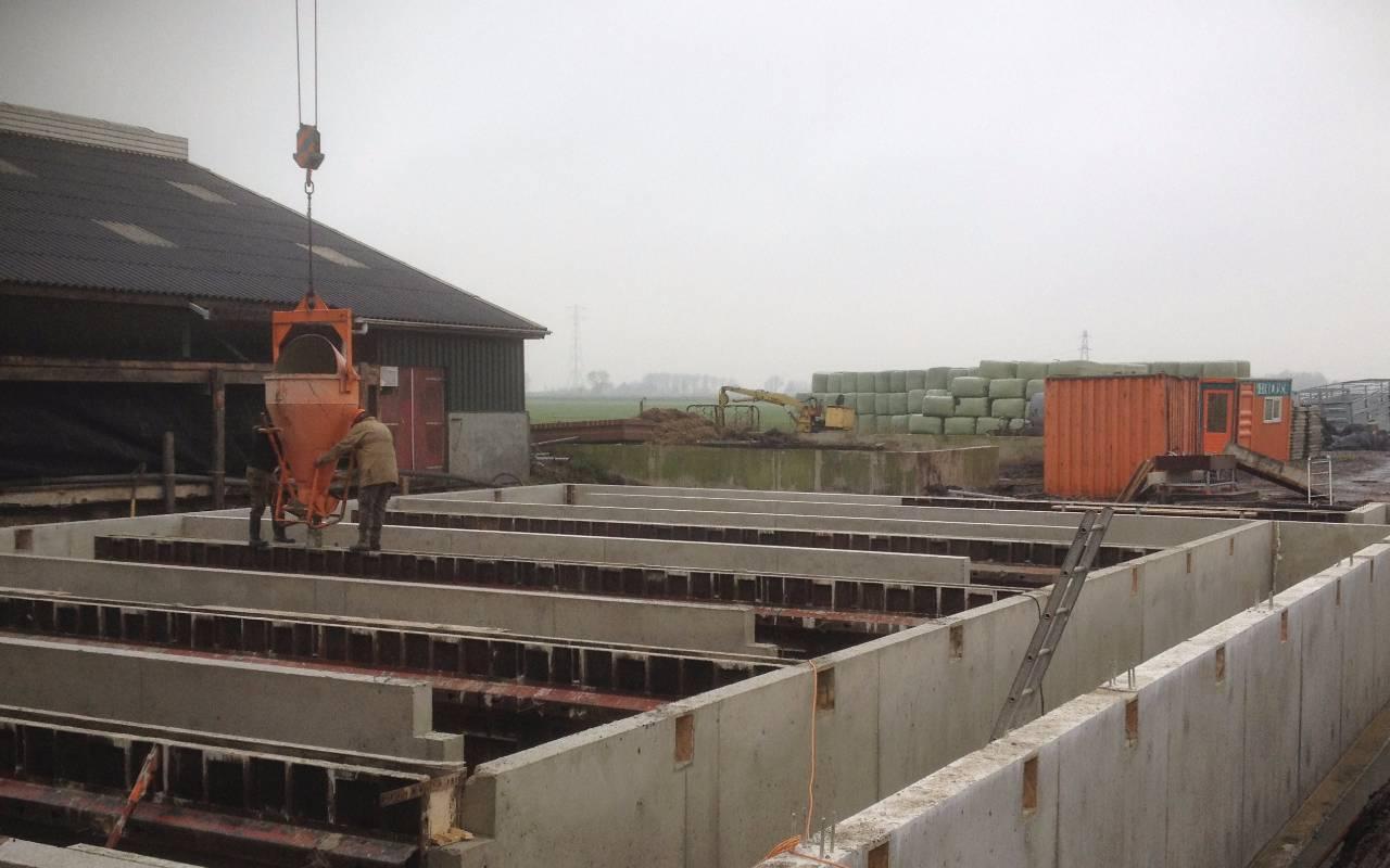 Rol - Starnmeer