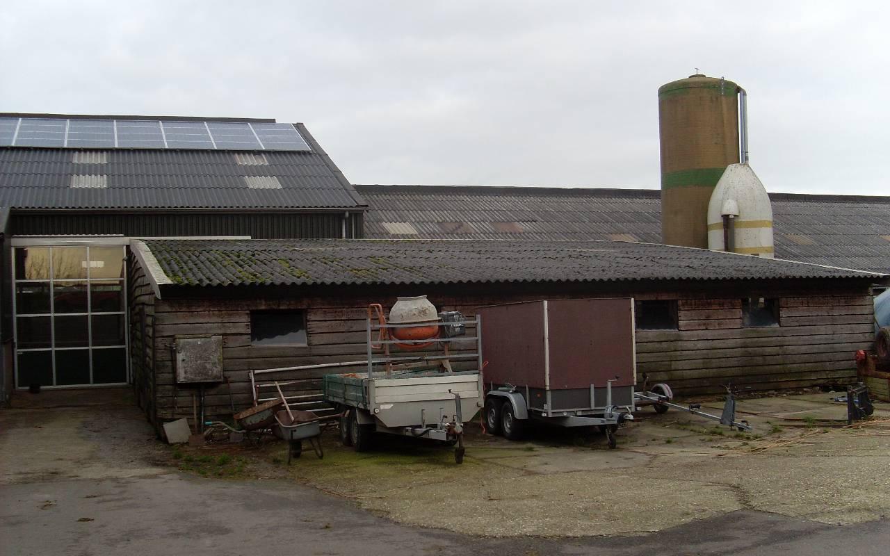 Bos - Monnickendam 3